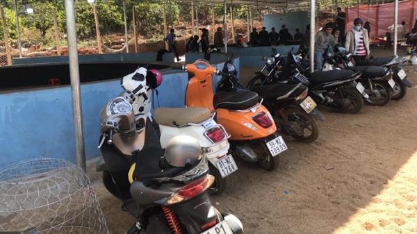 Vụ triệt phá trường gà KHỦNG trong khu du lịch ở Gia Lai: 3 ô tô và 13 mô tô giờ ra sao?