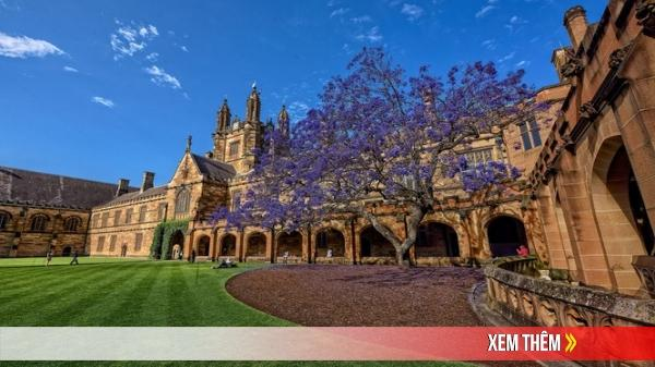 Tin vui: Đại học Sydney (Úc) mở rộng danh sách trường THPT được tuyển thẳng tại Việt Nam