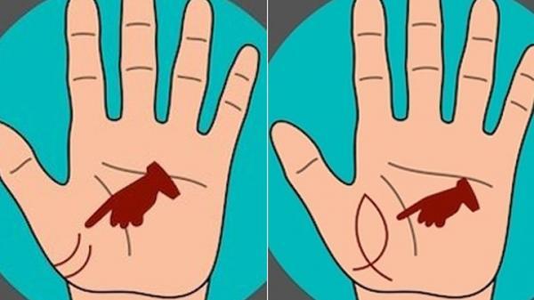 Bàn tay có những điểm này không phú cũng quý, số hưởng cả đời
