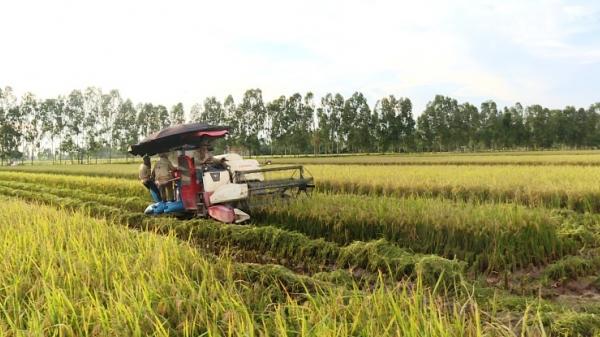 Liên tiếp bắt các đối tượng cưỡng đoạt tài sản chủ máy gặt ở Hưng Yên
