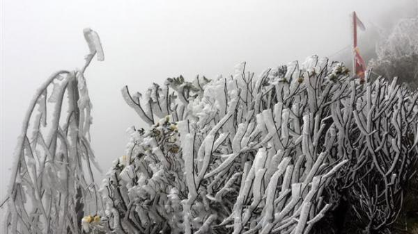 CẤP BÁO: Vài ngày nữa, vùng núi cao Bắc Bộ khả năng xảy ra băng giá và mưa tuyết