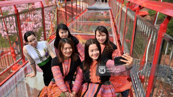 """Cận cảnh chiếc cầu kính trong suốt """"độc nhất vô nhị"""" tại Mộc Châu, Sơn La"""