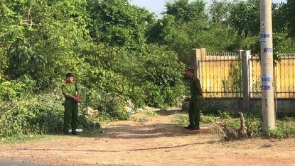 Đắk Lắk: Voi của hợp tác xã du lịch quật người đàn ông tử vong