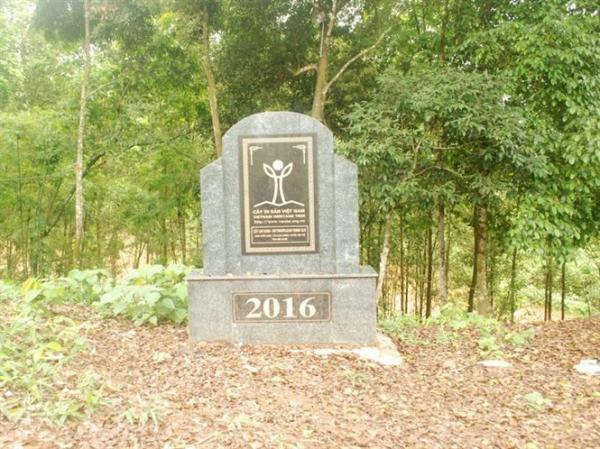 Bia đá công nhận là Cây di sản Việt Nam